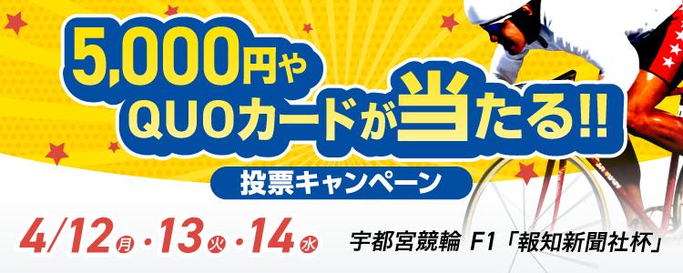 QUOカードが当たる!宇都宮競輪F1「報知新聞社杯」投票キャンペーン